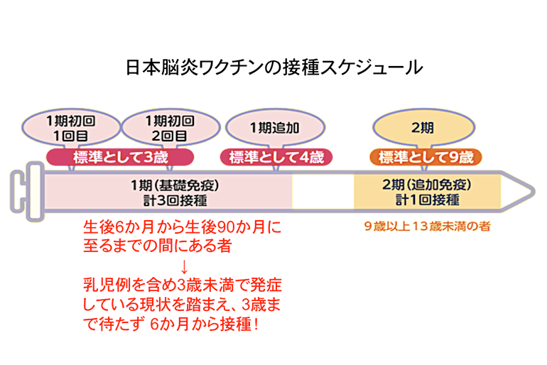 日本脳炎はどういう病気なの?